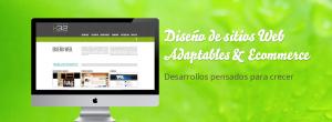 Desarrollo de sitios web adaptables y ecommerce