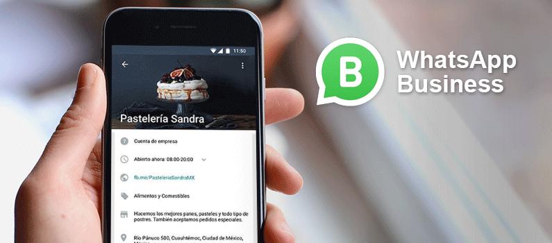 ¿Qué puede hacer Whatsapp Business por tu negocio?